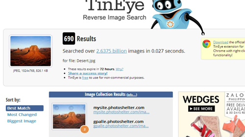 Search results on TinEye