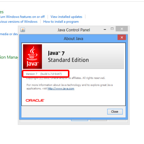 Check Java Version