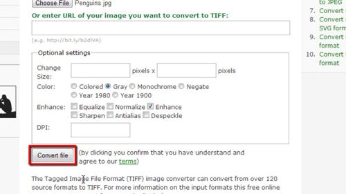 Converting the file