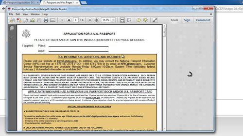 The downloaded pdf document to submit