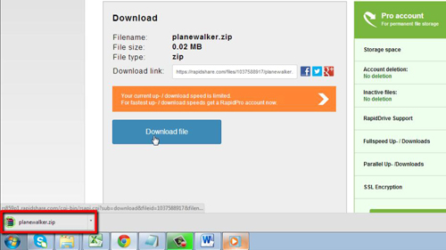 Downloading the file