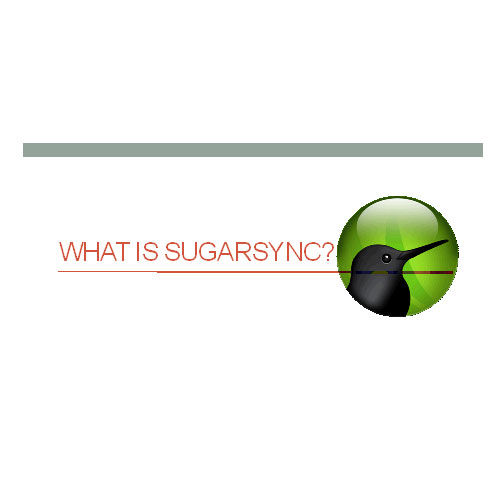 Overview of Sugarsync