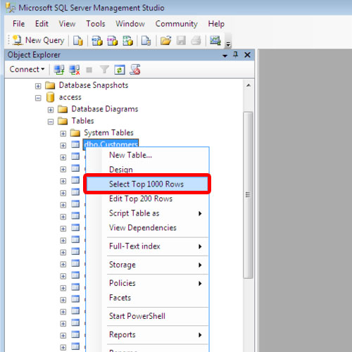 checking the conversion of data to SQL Server
