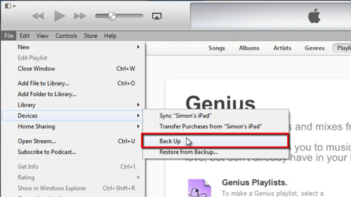 The backup option in iTunes