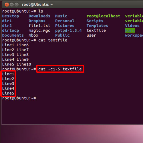 Cut command with attributes