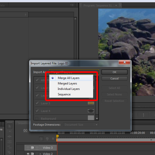 clicking on the merge all layers option