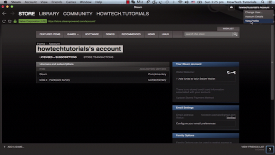 accessing the Steam user's profile