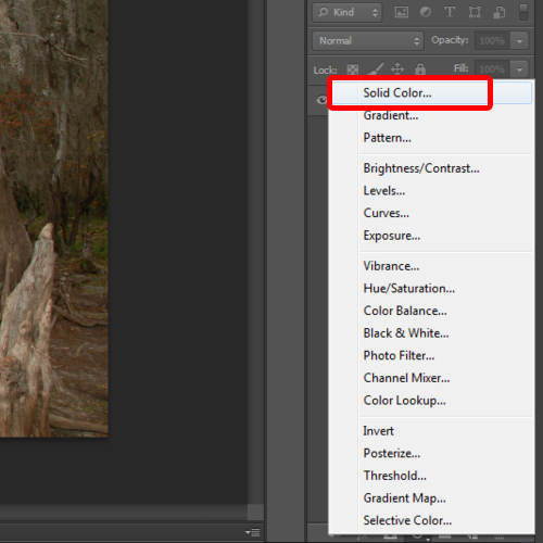 creating a solid color adjustment layer