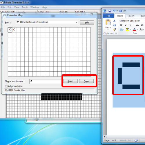 pasting the private character in Microsoft word