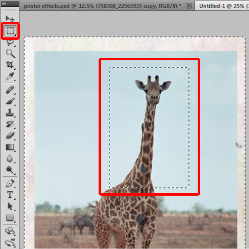 cropping out the giraffe image