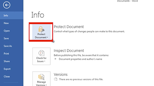 Select the Protect Document option
