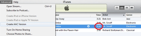 advanced menu in itunes