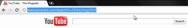 url of the video in the browser address bar