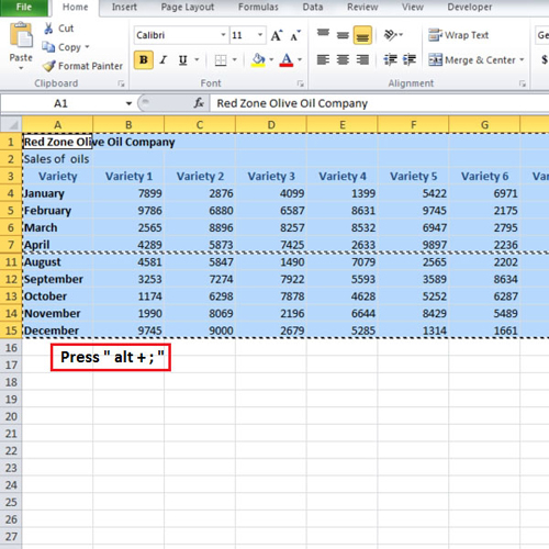 Copy data without hidden rows