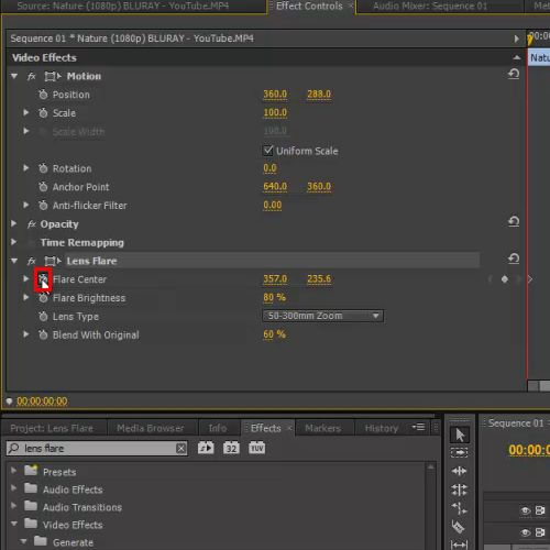 use of toggle animation button