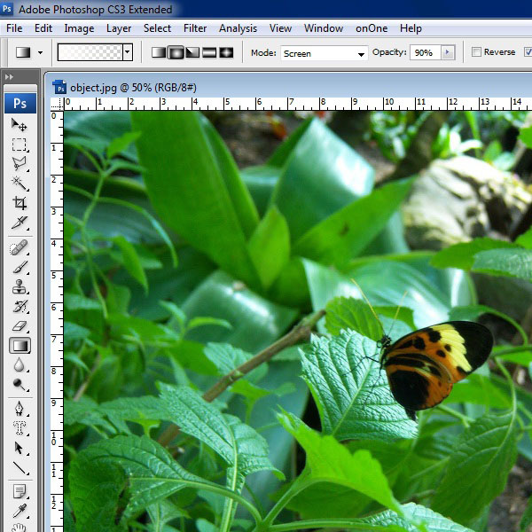 Open an image in Photoshop