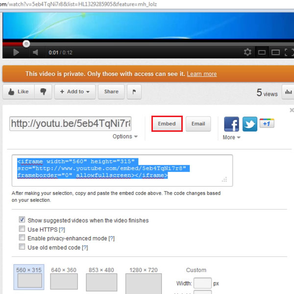 Select the embed option