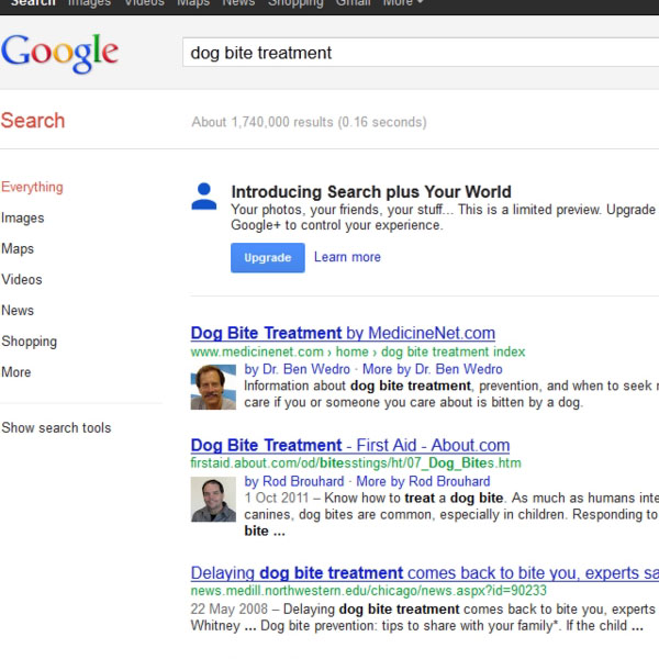 Search Results displayed in a Web Browser